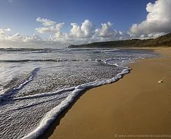 Alexandria Beach