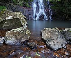 Araucaria Falls 2