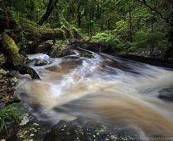 Gheerulla Creek 2