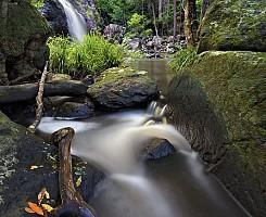 Gheerulla Creek Falls 3